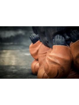 Buda en la flor de loto que sostiene la mano derecha en gesto específico